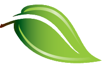 young-final-finish-hybrid-environmentally-friendly-green-leaf-logo